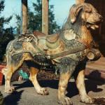 Record holding PTC dog, Bruno.