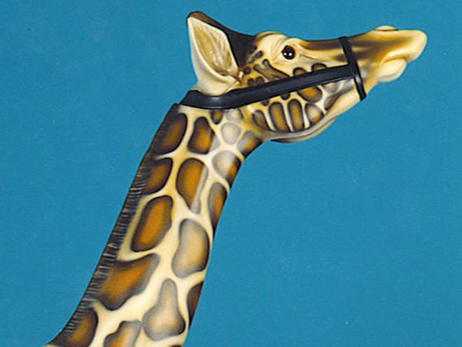1905_Mexican_Muller_Giraffe-head