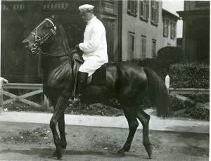 Illions_horse