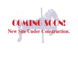 Under_Construction-Horse-Image