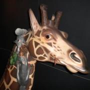 1906_PTC_Giraffe-head