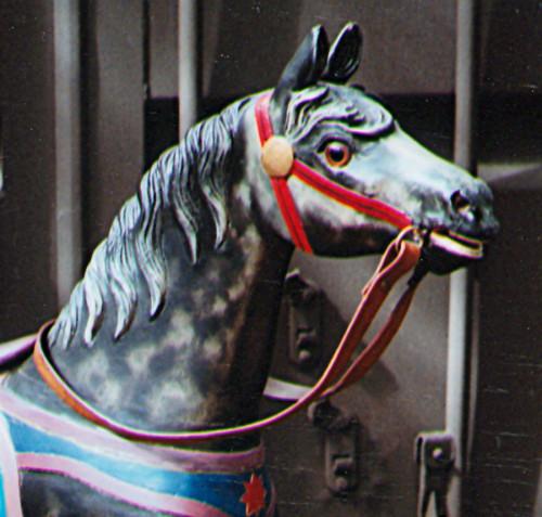 AH-trackmachine-horse-head