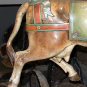 Bayol_cow-rear