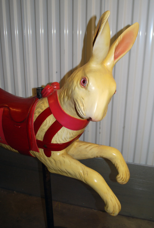 Bayol_rabbit_front-head