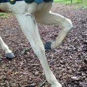 Carmel_Stander-CF_legs