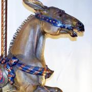Dentzel-carousel-mule-bust7