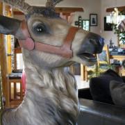 Dentzel-sweet-face-deer-head