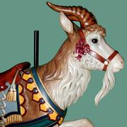Dentzel_Goat_HighBirdSaddle-head
