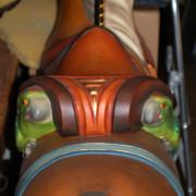 EJMorris_DBL-Parrot-saddle-stander-parrot-saddle-rear
