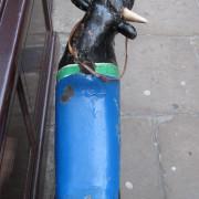 European-carved_Fairground_Bull-top2
