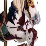 Herschell-Blanket-bust