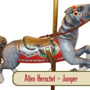Herschell-jumper2