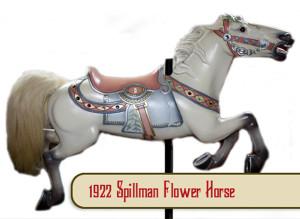 Spillman-flower