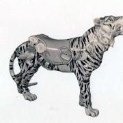 Tiger_catalog