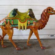 camel_romance