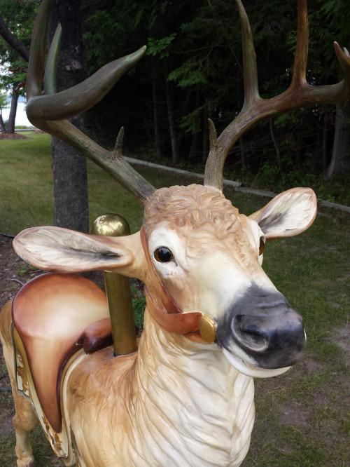 ca-1905-Dentzel-deer-prancer-face-2