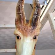 Quassy-E-J-Morris-Goat-face