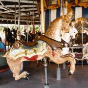 Quassy-E-Joy-Morris-carousel-goat1-ca-1980-photo