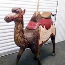 1885-Dare-camel-non-romance2