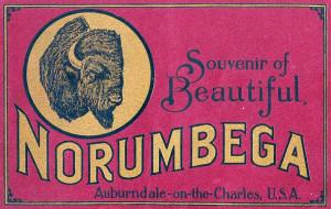 Norumbega-Souvenir-Book-Cover