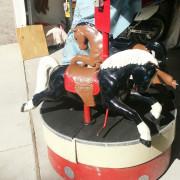 two-horse-kiddie-carousel-cu