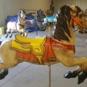 1951-Allan-Herschell-carousel-horse-newly-restored5