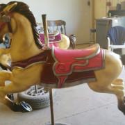 1951-Allan-Herschell-carousel-horse-newly-restored6