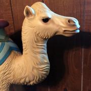 Ca-1906-PTC-camel-head2
