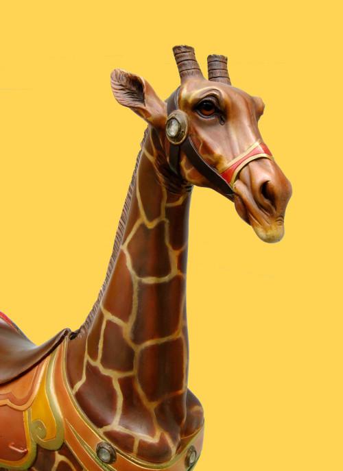1890s-dentzel-carousel-giraffe-bust