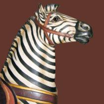 PTC-Morris-zebra-jumper-bust