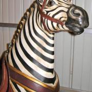 PTC-Morris-zebra-jumper-face