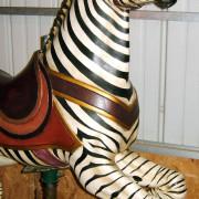 PTC-Morris-zebra-jumper-front